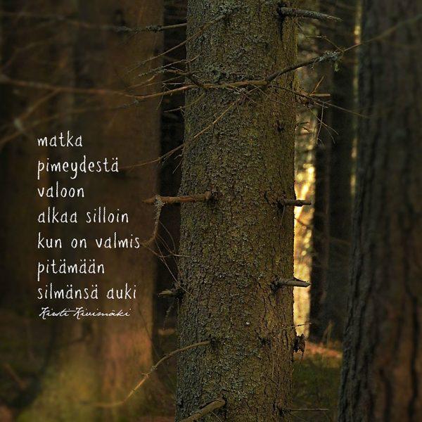 Pimeästä valoon - Kirsti Kivimäki
