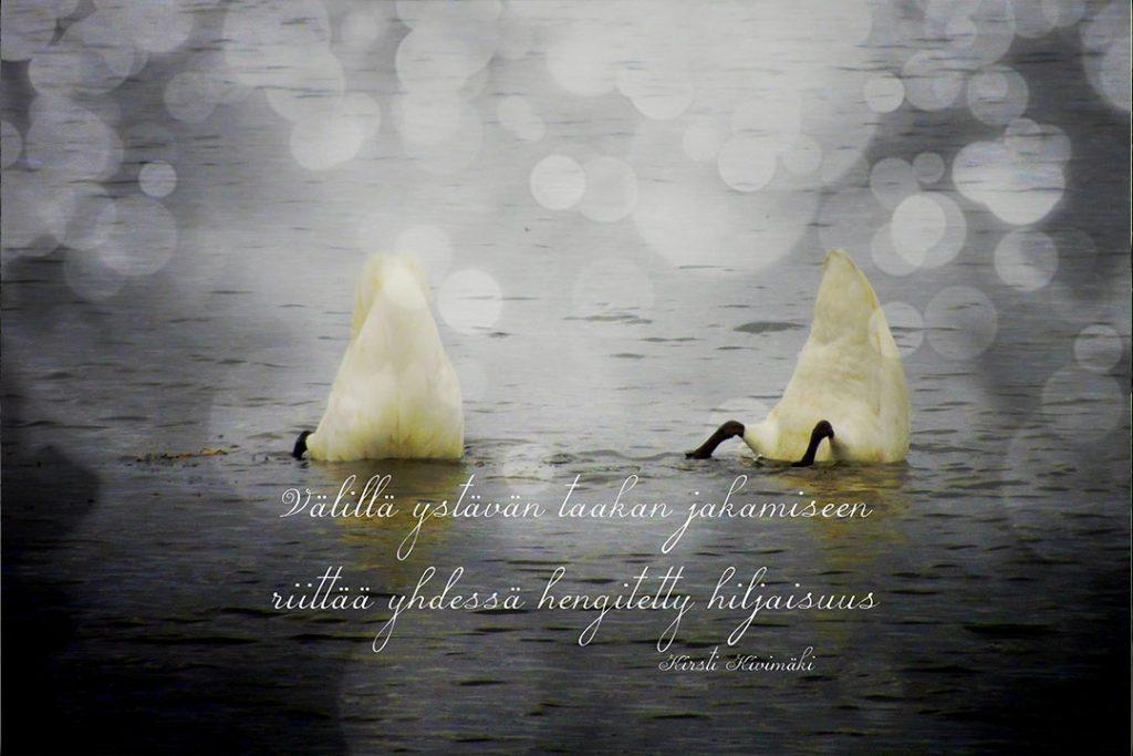 Pyrstöt - Kirsti Kivimäki