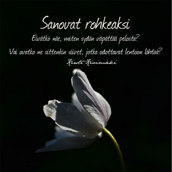 Rohkeus - Kirsti Kivimäki