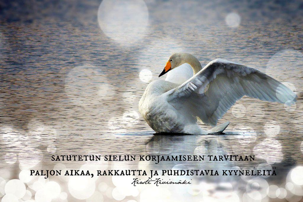 Satutettu sielu - Kirsti Kivimäki